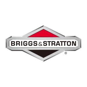 Slika proizvajalca Briggs & Stratton